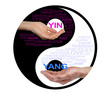 Постер, плакат: Yin and Yang Together We are Stronger a yin yang black and white symbol each side with a relevant word cloud and malefemale hand cupping the yinyang word on a white background