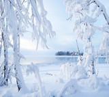 Dia de muito frio em Nikko