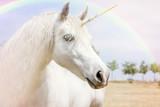 Unicorn - 98896368