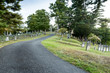 road in a cemetery
