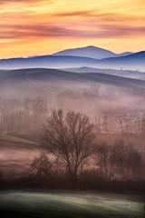 Tuscany in fog... © GuidoBoccarossa