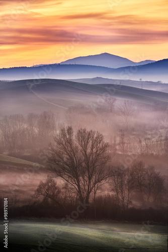 Tuscany in fog...