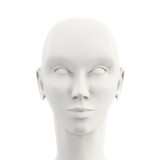 front view of white female mannequin head
