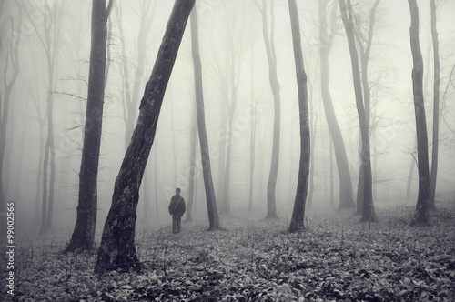 man in misty forest