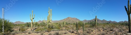 Arizona Desert Mountain Landscape
