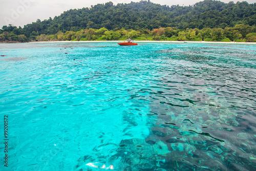Foto op Canvas Groene koraal clear water beautiful sea like a heaven at Similan island