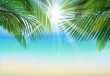 Palm leaf background on blue sky and sunbeams.Summer holidays