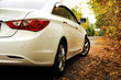 Постер, плакат: White car and autumn Белая машина на осеннем фоне