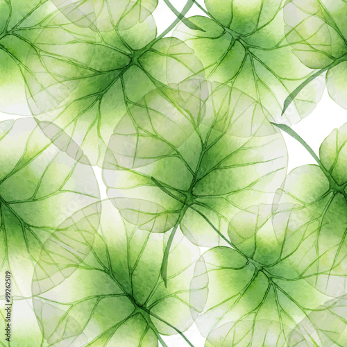 Tapeta Watercolor Seamless floral pattern with lotus leaves