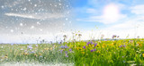 Fototapety Winter und Frühling