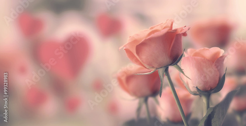 Poster Happy valentine's day, fine daisy color tone design, Blur and Select focus background