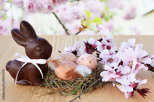 Fototapeta Easter background, card with easter eggs, chocolate bunny and pink spring blossoms