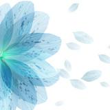 Floral round pattern of blue flower petals - 99457509