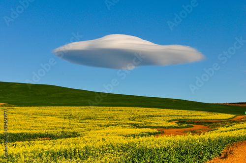 Foto op Canvas UFO Lenticularis Wolken über der Garden Route; Südafrika