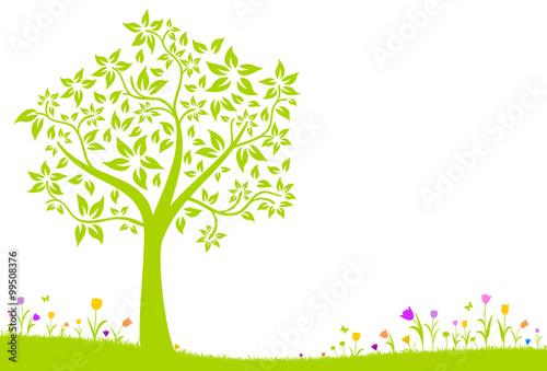 Naklejka Baum und Wiese