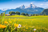 Fototapety Idyllic landscape in the Alps with green meadows and flowers