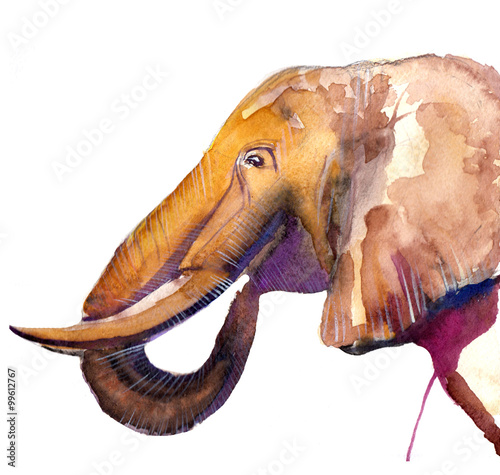 the elephant watercolor hand drawn isolated on the white background - 99612767