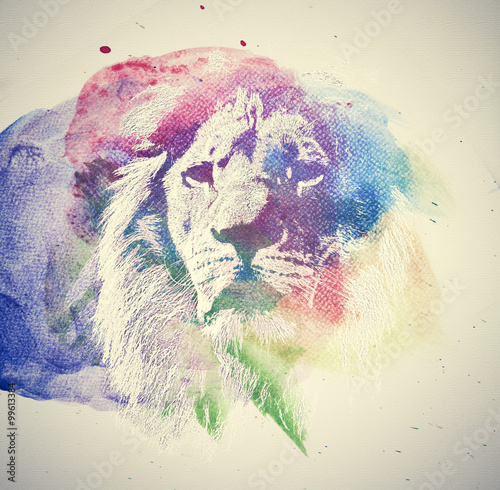 Watercolor painting of lion. Abstract, colorful art. - 99613384