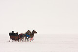 Traditional horse transport with toboggan on Lake Cildir which freeze in every winter time ,Kars