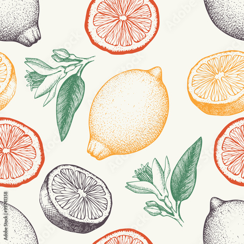 Vector seamless pattern with ink hand drawn lemon fruit, flowers, slice and leaves sketch. Vintage citrus background in pastel colors - 99741358