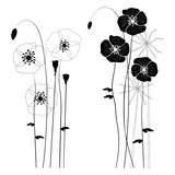 Set of wild plants, poppies and dandelions - vector illustration