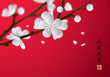 Plum blossom in spring. Translation: Flowers bloom during the warm spring.