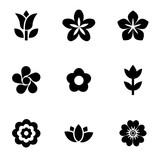 Fototapety Vector black flowers icon set. Flowers Icon Object, Flowers Icon Picture, Flowers Icon Image - stock vector