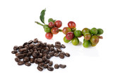 coffee berry and coffee beans on white background - 99794175