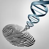 Genetic Fingerprinting