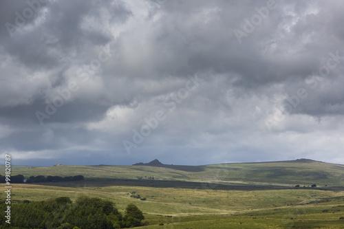 Poster Dartmoor