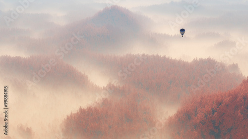 Aerial of misty autumn pine tree forest with hot air balloon. - 99884915