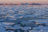 Sea Ice - Greenland