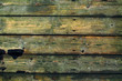 Old wood boards as texture