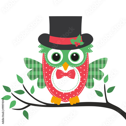owl with hat on a branch