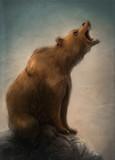 oso pardo salvaje