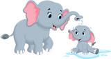 Fototapety Vector illustration of mother elephants bathing her child