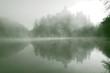 Misty castle in the fog