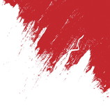 Fototapety red brush stroke isolated on white background and texture, illustration design element