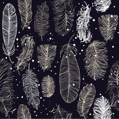 seamless pattern with beautiful feathers