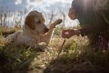 Mensch Hund Team