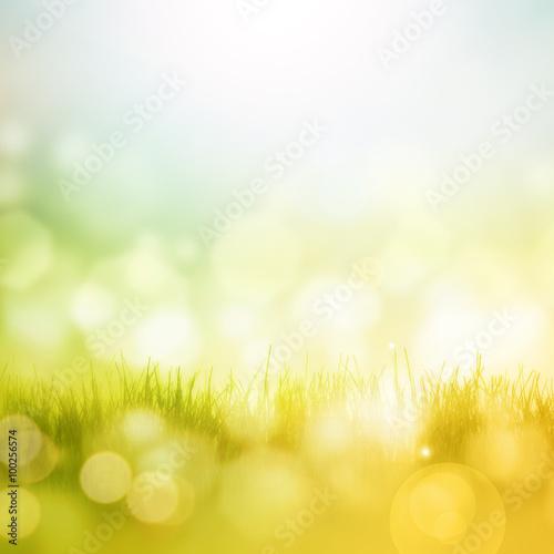 Zdjęcia na płótnie, fototapety, obrazy : Spring background