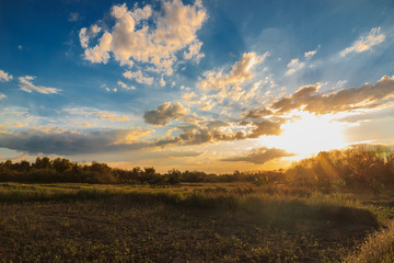 Sunshine in the field with beautiful light in countryside with clouds on blue sky