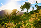 Nature Background. Landscape Of Green Hills. Scenery. Thailand,