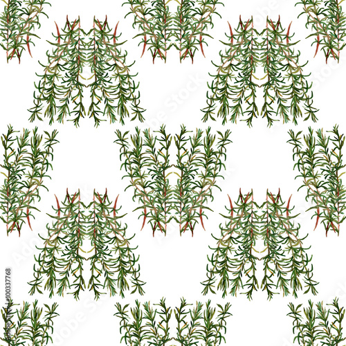 Fototapeta Seamless handmade floral pattern. Bunch of rosemary. Isolated on a white background. Fabric texture. Herbs vintage design. Wallpaper.