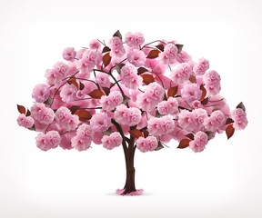 Spring pink tree, vector icon