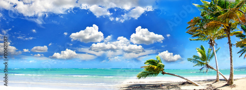 Beach panorama: Perfect tropical paradise beach with turquoise blue water,  blue sky and coco palm :)