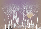 Abstract forest trees with out leave with the moon night time vision ,white tree