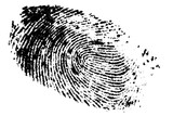 Fingerprint / Fingerprint on white background, digital retouch.