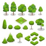 Isometric vector trees elements for landscape design.