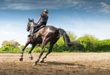 woman riding a horse - 100691563
